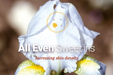 Naolys active cells from Sweet iris for an anti-wrinkle effect